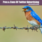 Pros & Cons of Twitter Advertising